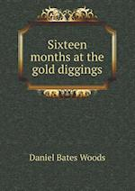 Sixteen Months at the Gold Diggings af Daniel Bates Woods