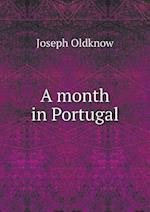 A month in Portugal