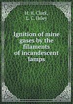 Ignition of mine gases by the filaments of incandescent lamps