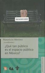 Que Tan Publico Es El Espacio Publico En Mexico?