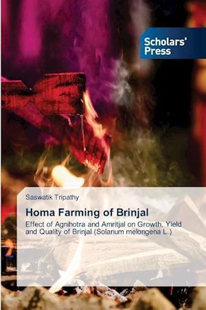 Homa Farming of Brinjal