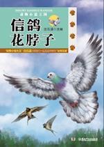 Animal Novel Kingdom - Carrier Pigeon Flower Neck