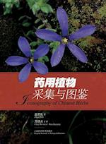 Medicinal Plant Acquisition and Illustrated Handbook