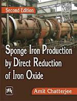 Sponge Iron Production by Direct Reduction of Iron Oxide