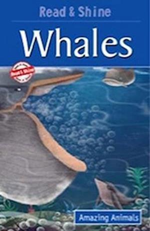Bog, paperback Whales