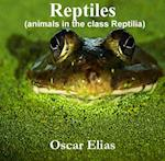 Reptiles (animals in the class Reptilia)