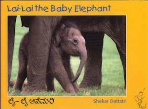 Lai Lai the Baby Elephant