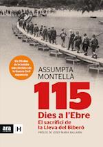 115 dies a l'Ebre af Assumpta Montellà I Carlos, Josep Maria Ballarin I Monset