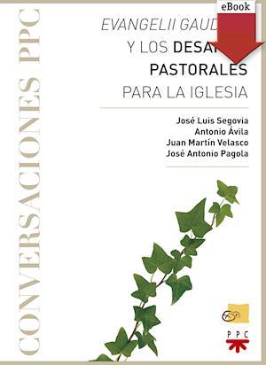 Evangelii gaudium y los desafíos pastorales para la Iglesia (eBook-ePub)