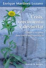 Crisis, crecimiento y despertar af Enrique Martínez Lozano