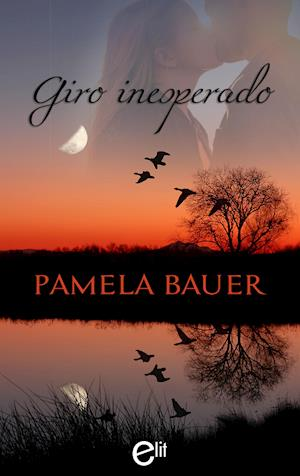 Giro inesperado af Pamela Bauer