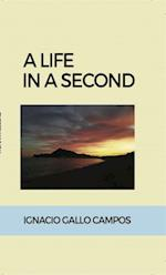 A life in a second af Ignacio Gallo Campos
