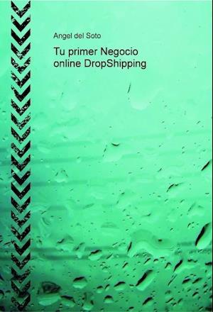 Tu primer Negocio online DropShipping