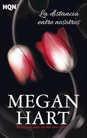 La distancia entre nosotros af Megan Hart