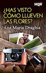 ¿Has visto cómo llueven las flores? af Ana María Draghia