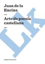 Arte de poesia castellana