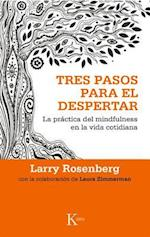 Tres pasos para el despertar / Three Steps to Awakening af Larry Rosenberg