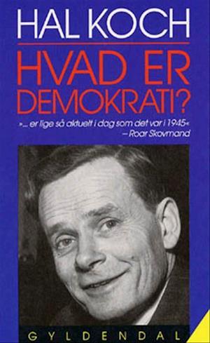 Hvad er demokrati?