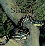 Slanger (De små fagbøger)