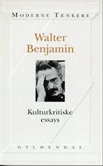 Kulturkritiske essays (Moderne tænkere)