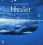 Hvaler (De små fagbøger)