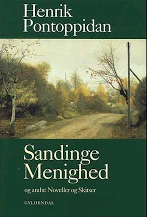 Sandinge Menighed og andre Noveller og Skitser