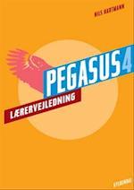 Pegasus 4 (Pegasus 4 klasse)