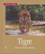 Tigre (Første fakta)