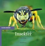 Insekter (De små fagbøger)