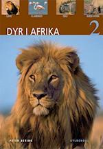 Dyr i Afrika. Løve, flamingo, gnu, næsehorn (Dyr i Afrika)