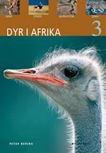 Dyr i Afrika. Giraf, struds, klippe-pyton, zebra (Dyr)