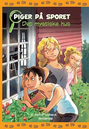 Bog, indbundet Det mystiske hus af Petter Lidbeck