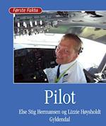 Pilot (Første fakta)