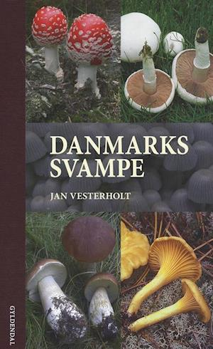 Bog indbundet Danmarks svampe af Jan Vesterholt
