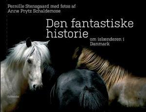 Bog indbundet Den fantastiske historie om islænderen i Danmark af Pernille Stensgaard