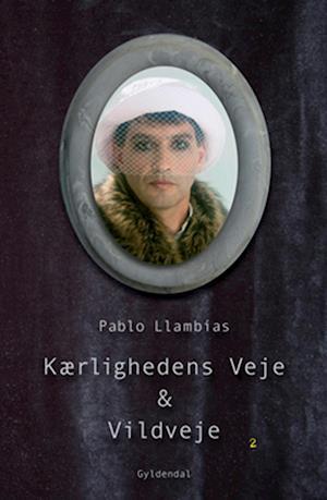 Kærlighedens veje & vildveje af Pablo Llambías