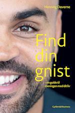 Find din GNIST