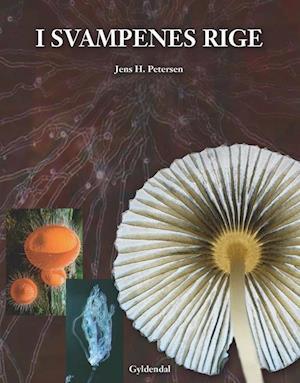 Bog, indbundet I svampenes rige af Jens H Petersen