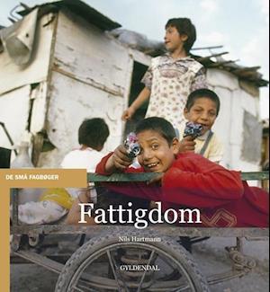 Bog, hæftet Fattigdom af Nils Hartmann