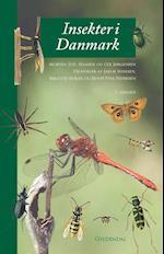 Insekter i Danmark
