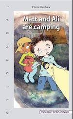 Matt and Ali are camping (English micro dingo)