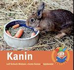 Kanin af Leif Schack-Nielsen, Grete Sonne