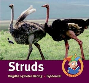 Bog, indbundet Struds af Peter Bering, Birgitte Bering