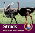 Struds (Fagfilur)