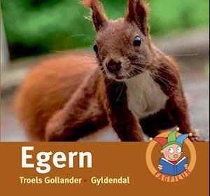 Bog, indbundet Egern af Troels Gollander