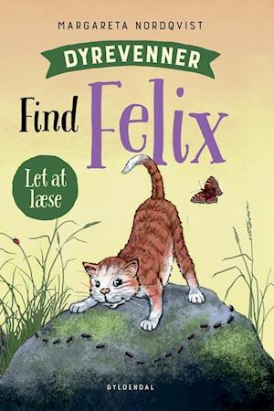 Find Felix