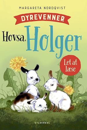 Hovsa, Holger