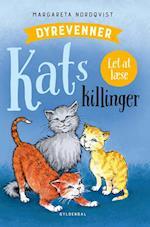 Kats killinger