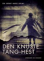 Den knuste Tang-hest (Irene Huss-serien, nr. 1)