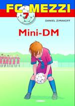 Mini-DM